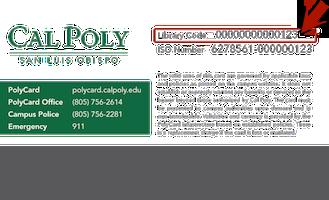 polycard_back