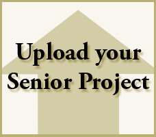 submit_senior-project_graphic3