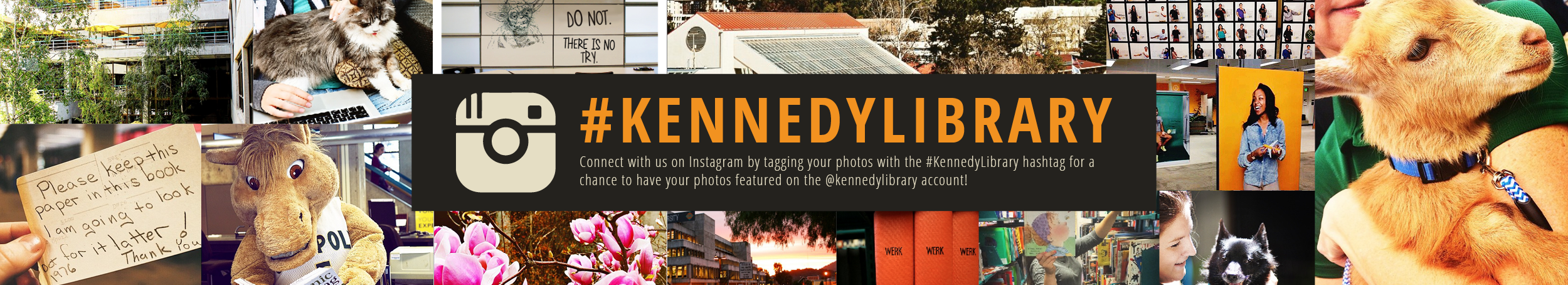 #kennedylibrary slider
