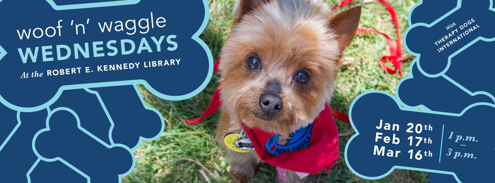 Dogs at the library Cuddle your stress away Three dates in winter